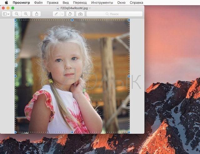 Универсальный буфер обмена на iOS 10 и Mac