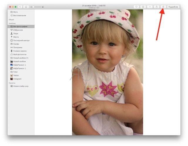 Как установить (активировать) расширение для приложения «Фото» на Mac
