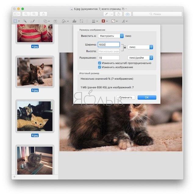Групповое редактирование фото (размер, формат) в «Просмотре»