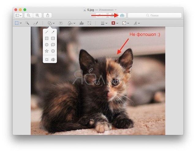 «Просмотр» позволяет делать на картинках различные пометки