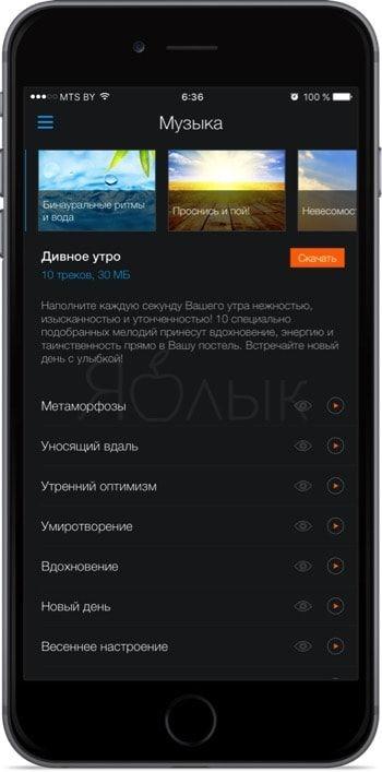 Будильник iOS