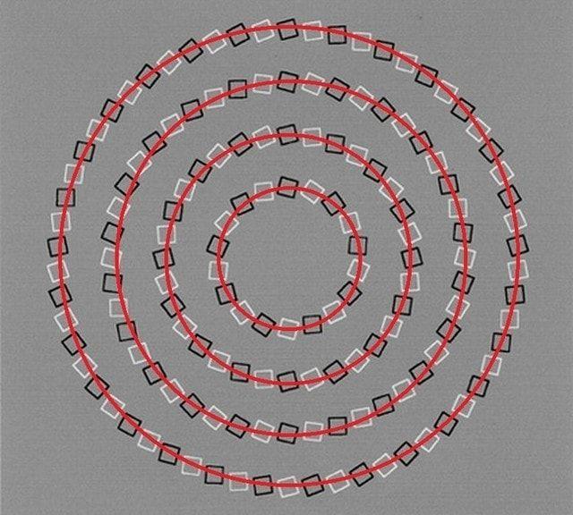 50 лучших оптических иллюзий