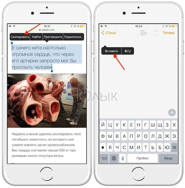 Копирование текста в iOS