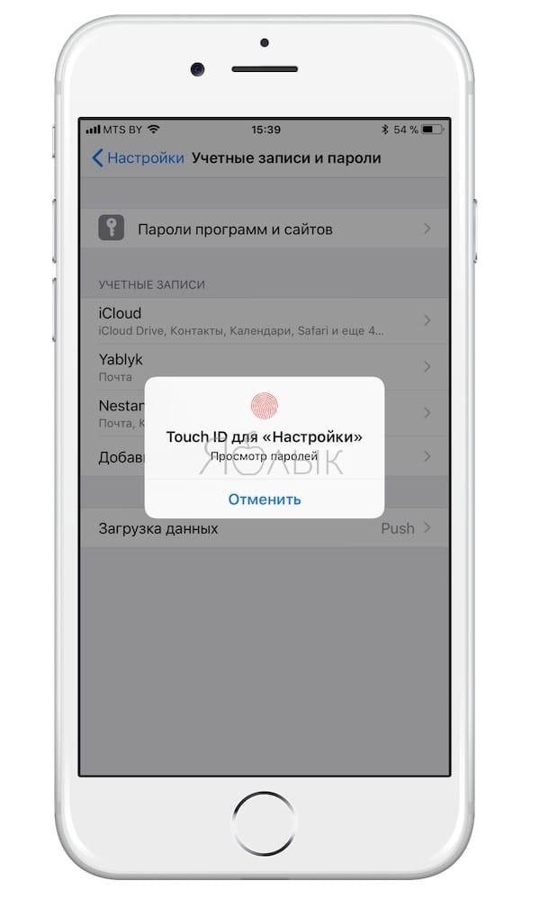 Как просмотреть пароли iCloud Keychain на iPhone и iPad