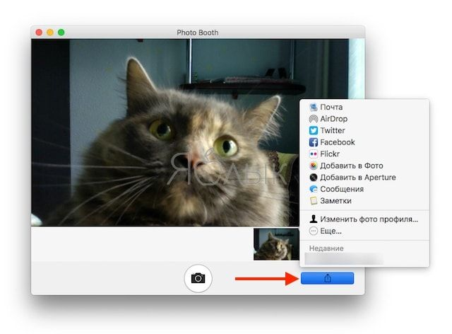 How to take pictures with a camera on Mac