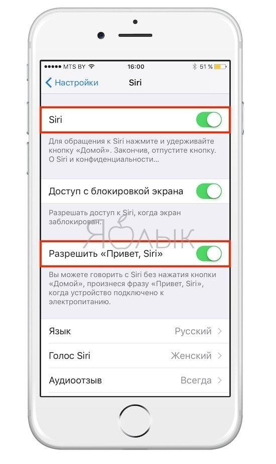 Не работает Siri на iPhone и iPad, как починить?