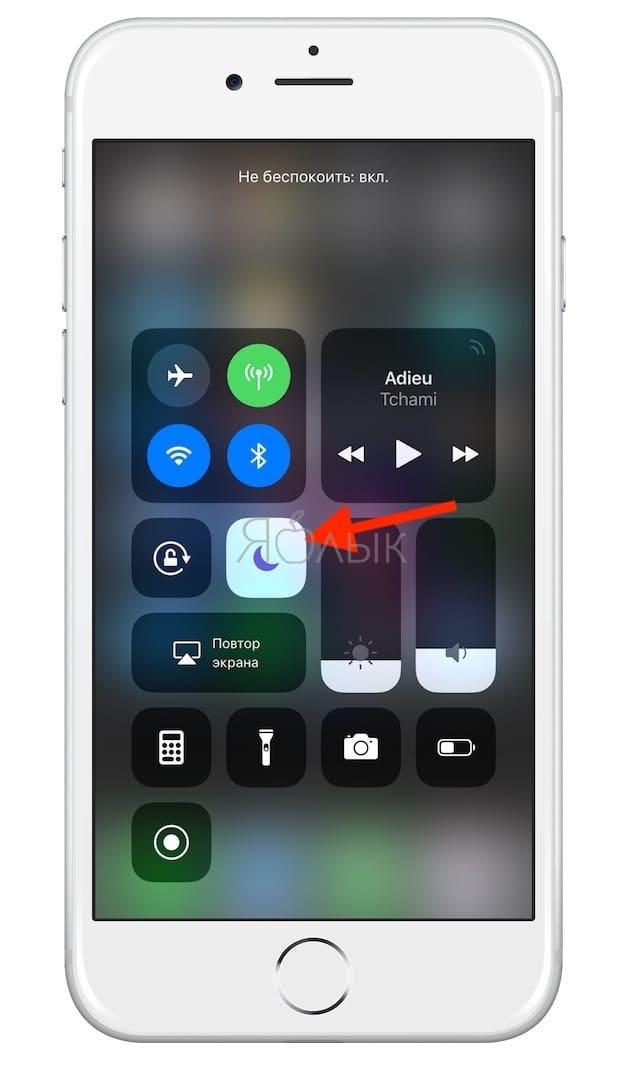 Бесшумный режим на iPhone и режим «Не беспокоить» - отличия