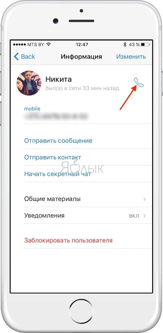 Как звонить в Telegram на iPhone и iPad