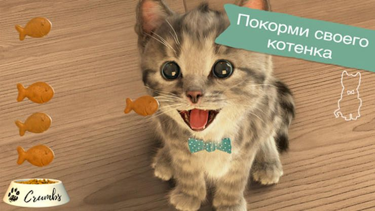 Маленький котенок - мой любимый кот - развивающая игра для детей