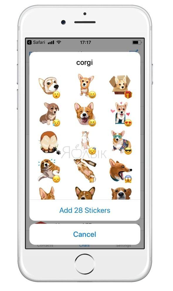 Стикеры с собаками породы корги в Telegram