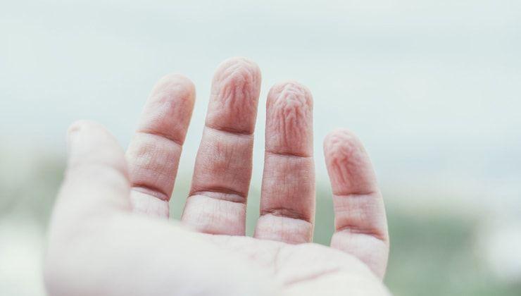 Почему в воде морщится кожа на пальцах?