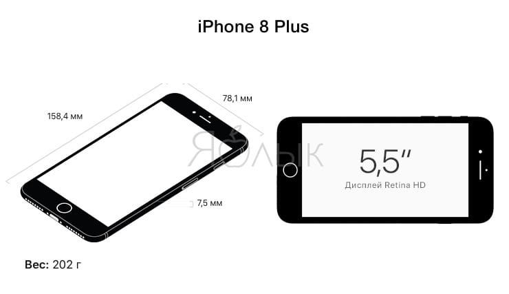 Размеры iPhone 8, iPhone 8 Plus и iPhone X: сравнение габаритов смартфонов Apple 2017 года выпуска