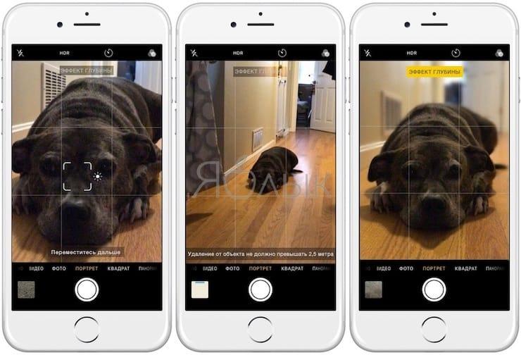 Портретный режим на iPhone 7 Plus