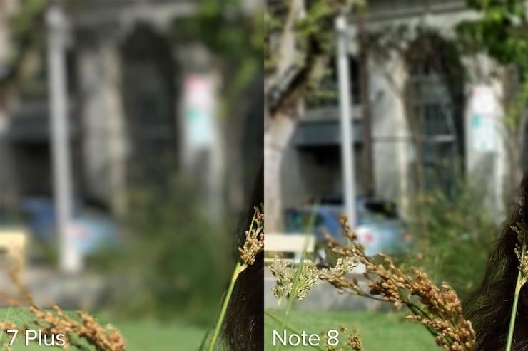 Какая камера лучше снимает Портретный режим: Galaxy Note 8 или iPhone 7 Plus?