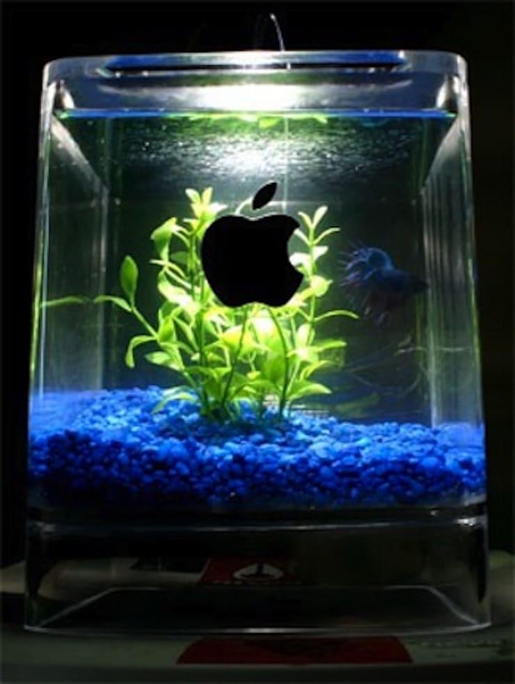 Aquarium from Power Mac Cube