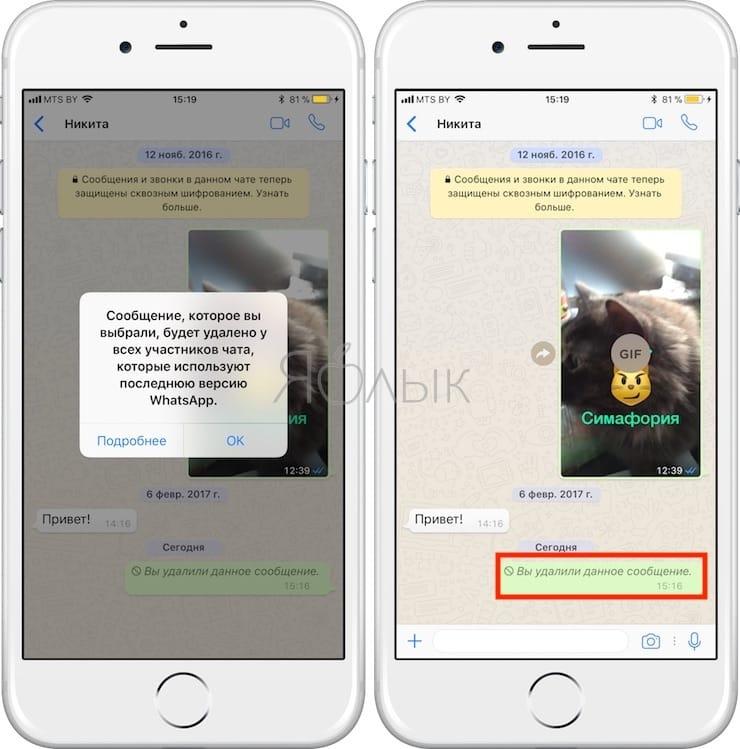 Как удалять отправленные сообщения в WhatsApp на iPhone