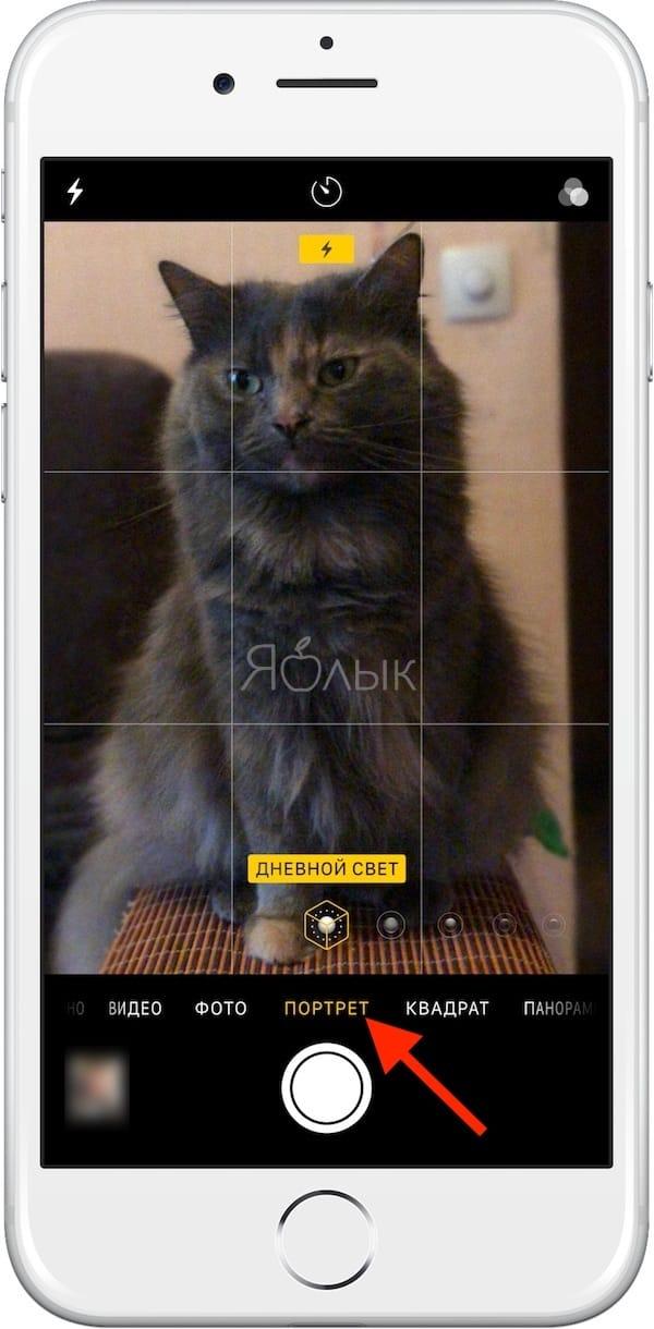 Как включить Портретный режим на iPhone