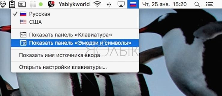 How to type dollar symbol $, ruble ₽ and euro € on macOS keyboard