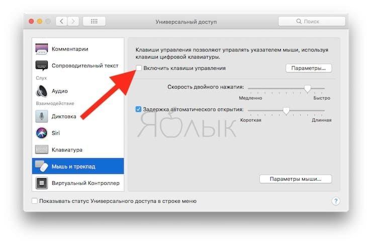 Убедитесь в том, что функция «Mouse Keys» отключена