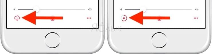 Как скачать видео из Apple Music