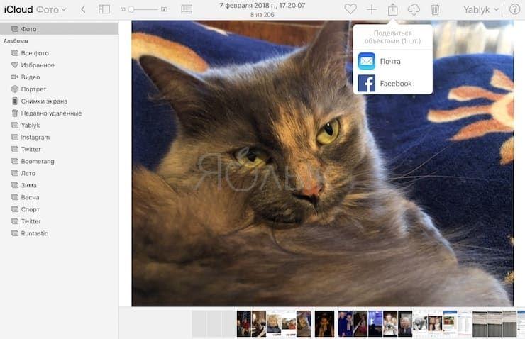 Как поделиться фото или видео через iCloud.com