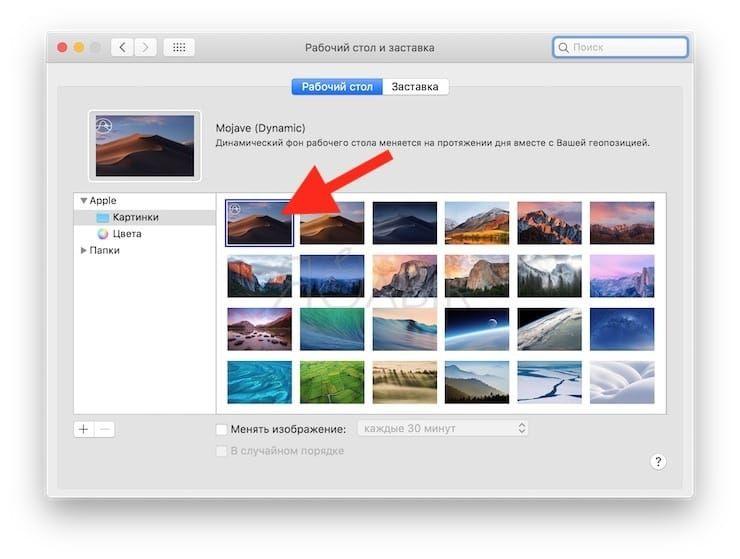 Динамические обои в macOS