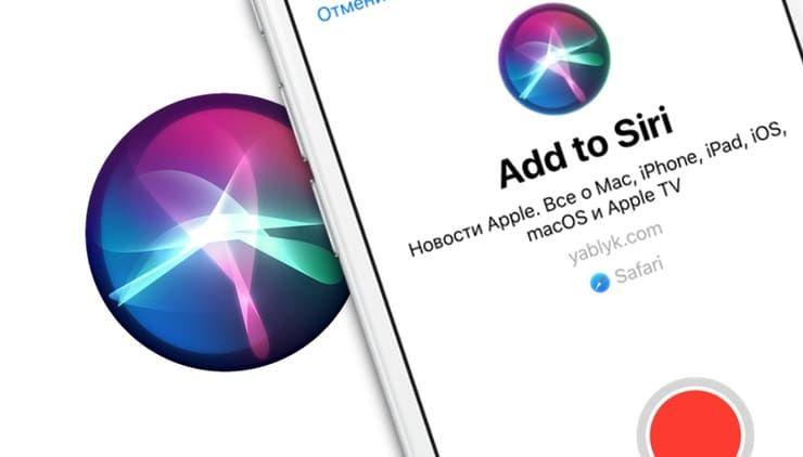 Быстрые (собственные) команды Siri на iOS 12: что это и как создавать