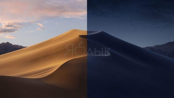 Динамические обои macOS