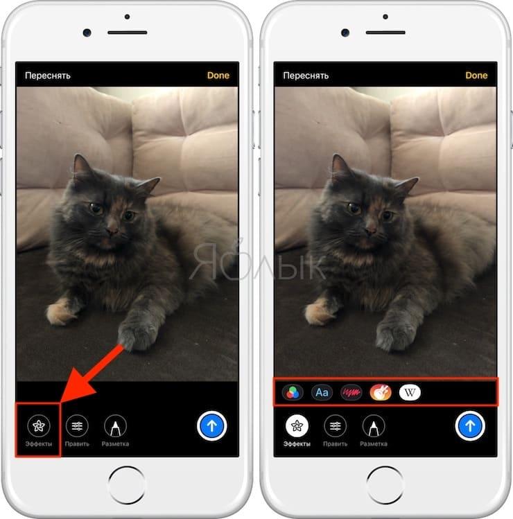 Как добавить текст, эффекты или стикеры на фото и видео в приложении Сообщения на iPhone и iPad