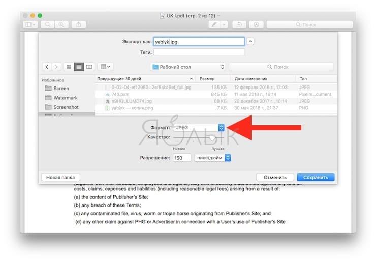 Как конвертировать PDF в JPEG бесплатно на компьютере Windows и Mac