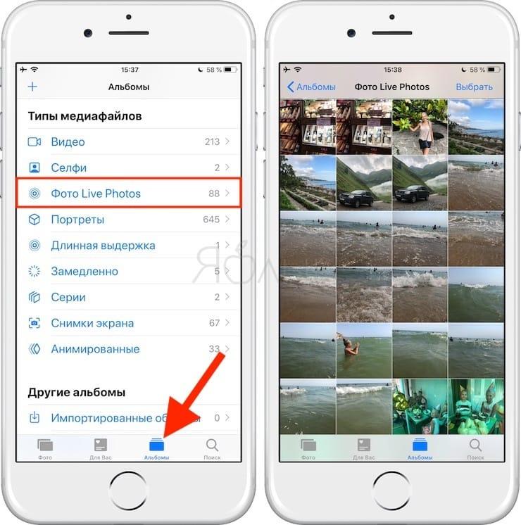 Как сделать Gif (гифку) из Live Photos на iPhone, iPad