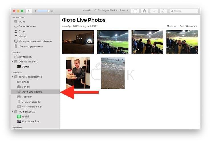 Как сохранить Живые фото в формате gif на Mac