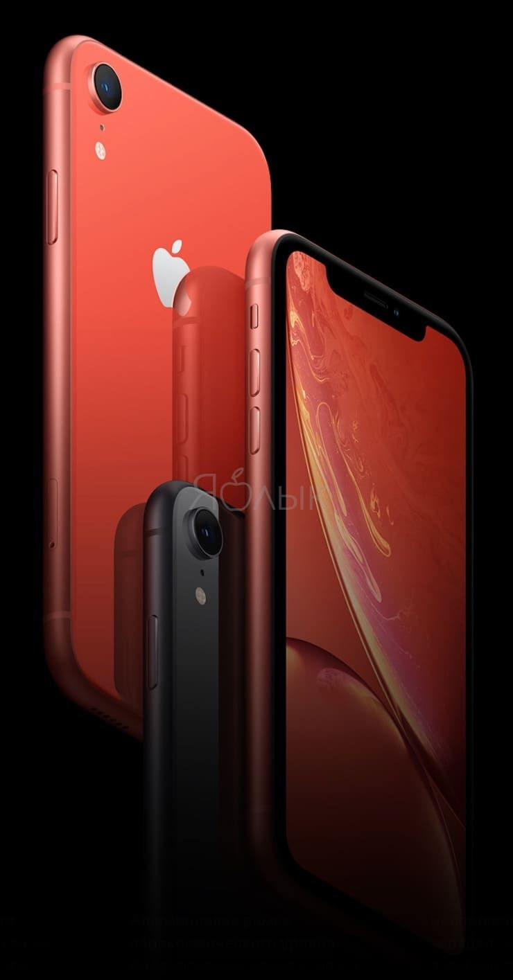 Дизайн iPhone XR