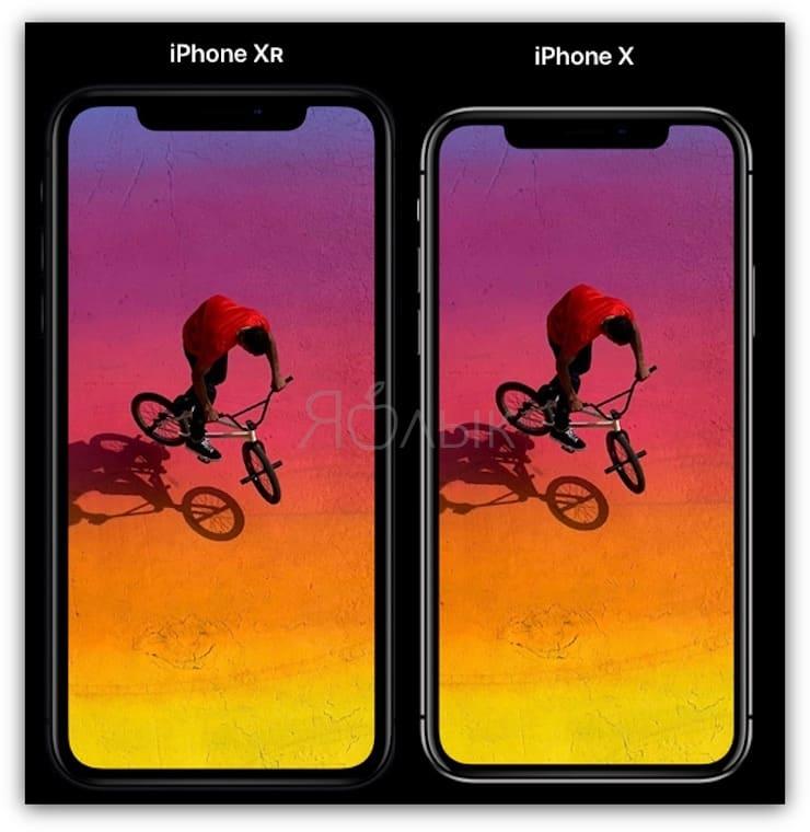 Сравнение размеров iPhone XR и iPhone X