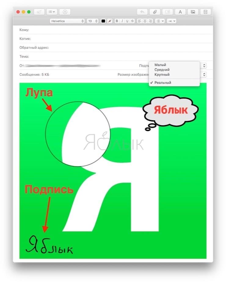 Разметка, или как рисовать (делать пометки) на фото или PDF в приложении Почта (Mail) на Mac
