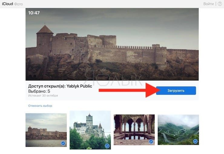 How to add (save) photos and videos from shared links to your library