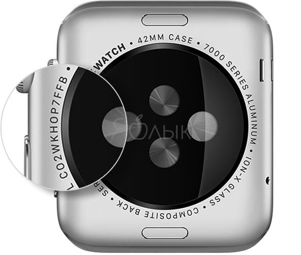 Где находится серийный номер на корпусе Apple Watch