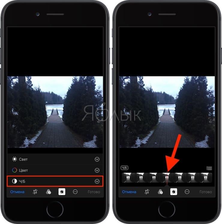 Как снимать крутые черно-белые фотографии на iPhone