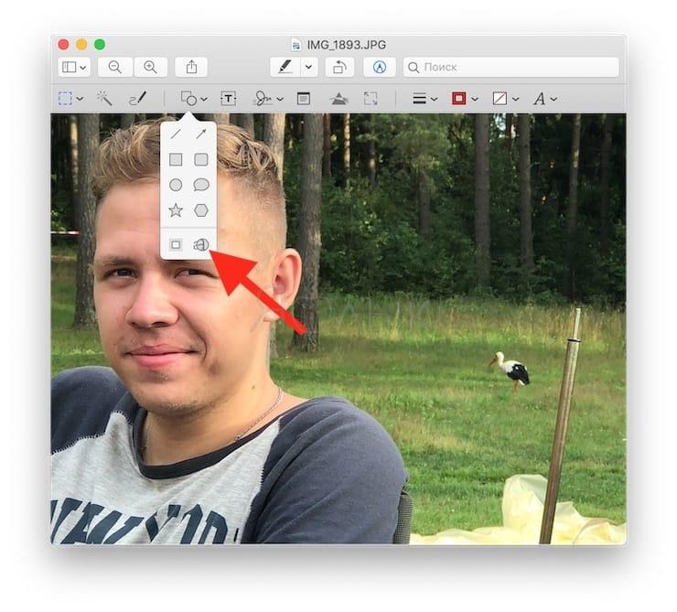 Как пользоваться лупой в Просмотре на Mac