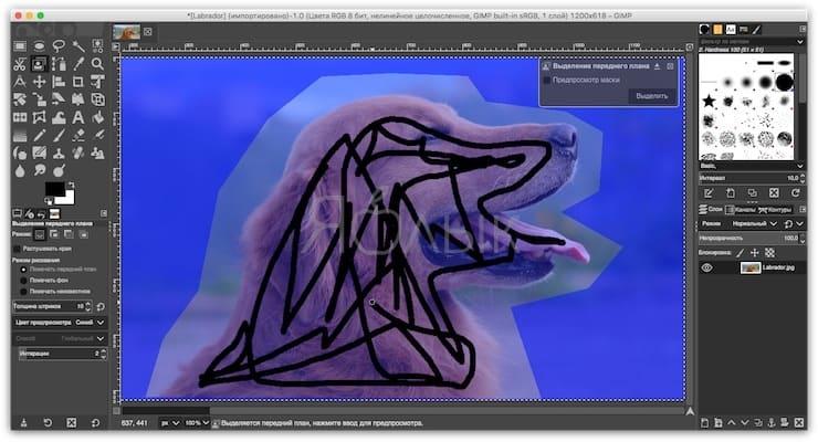 Как сделать фон прозрачным при использовании инструмента «Выделение переднего плана»