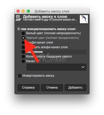 Удаление фона в GIMP с помощью масок