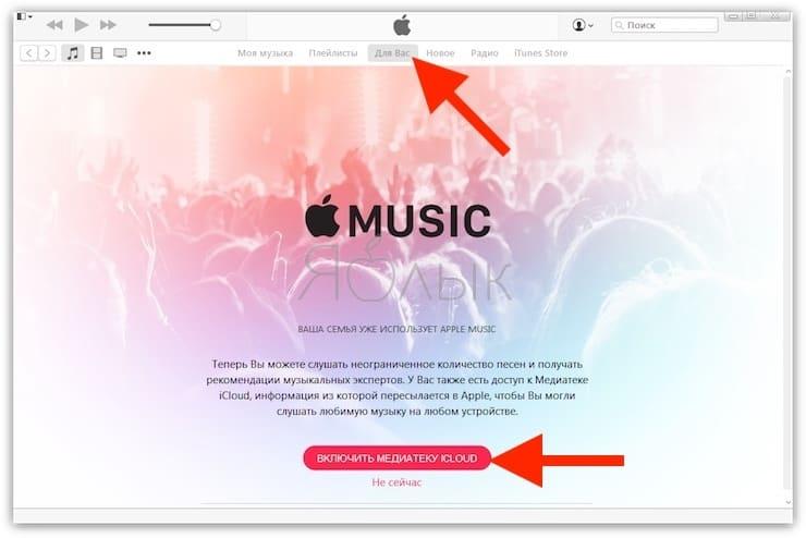 Как слушать Apple Music на компьютере Windows или Mac используя программу iTunes (рекомендуется)