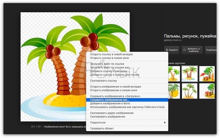 Как сохранить картинку из Интернета на Mac
