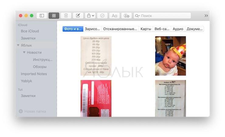 Используйте браузер вложений в Заметках на Mac и iOS