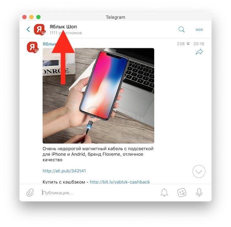 Как узнать ссылку на канал или групповой чат в Telegram