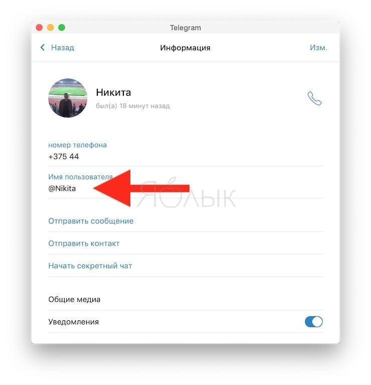 Как узнать ссылку на чужой профиль Telegram