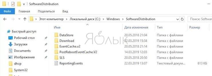 Удалите системную папку SoftwareDistribution для исправления ошибки 0X8000ffff
