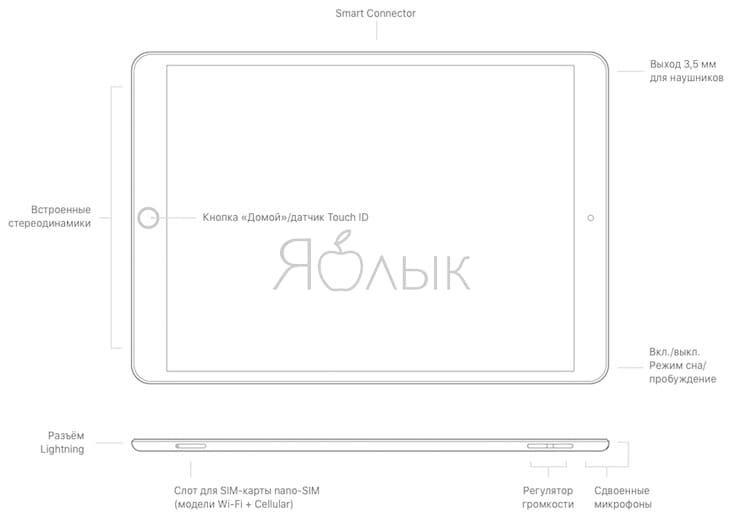 Кнопки и разъемыiPad Air 3 (2019)