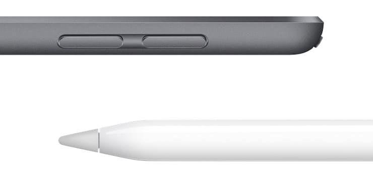Поддержка Apple Pencil в iPad mini 5 2019