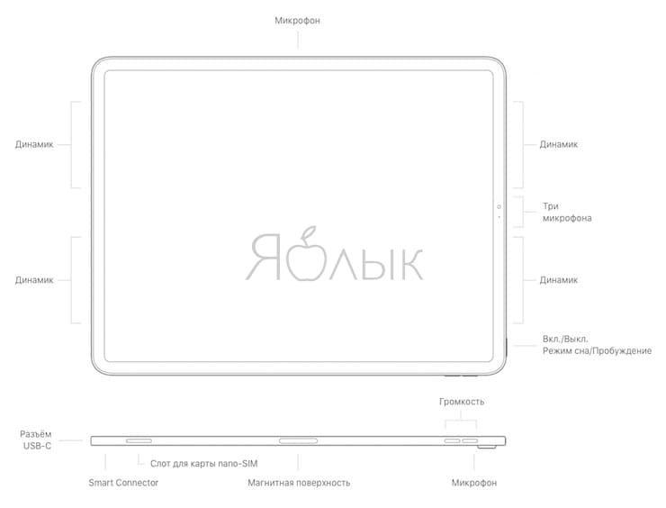Кнопки и разъемыiPad Pro (2018)